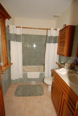 Master Bathroom features full-sized bath, shower and all the usual amenities